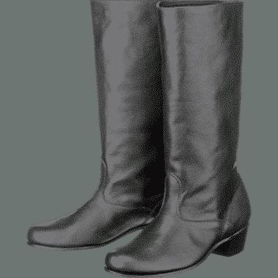 Дамски ботуши – 03172
